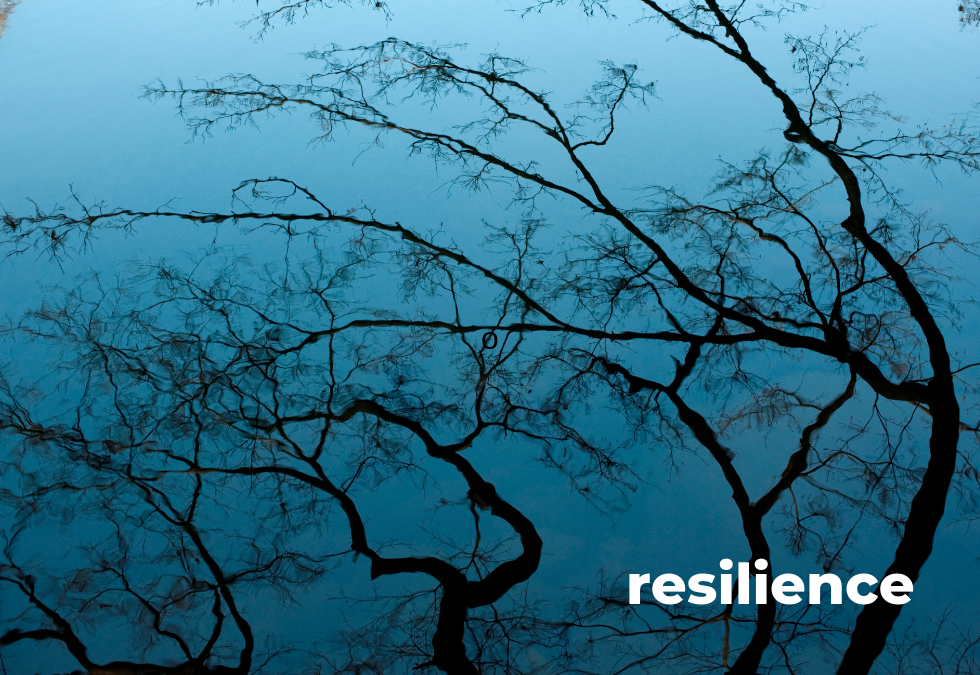 """Resilience 4: """"Propheting"""" from the Long View"""